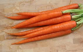 Can I Give My Dog Carrots