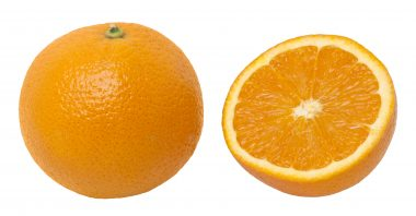 Can I give my dog Oranges Tangerine