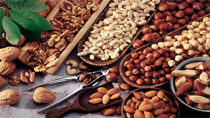 Are nuts Are Safe for Dogs