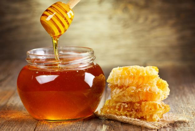 Can you give a dog honey for a cough?
