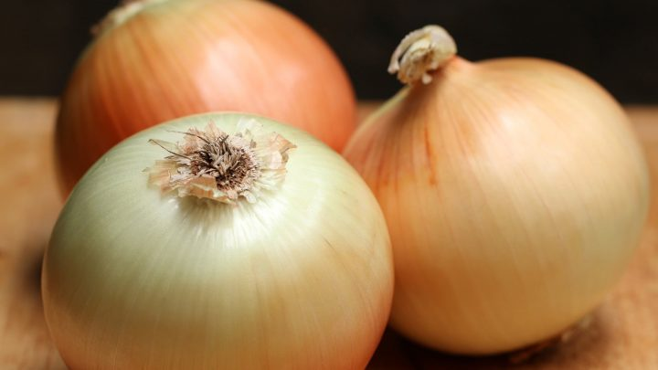 what to do if dog ate small piece of onion