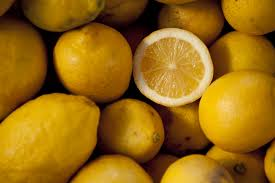 what to do if your dog eats a lemon
