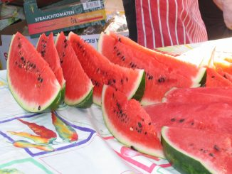 can dogs eat watermelon rind