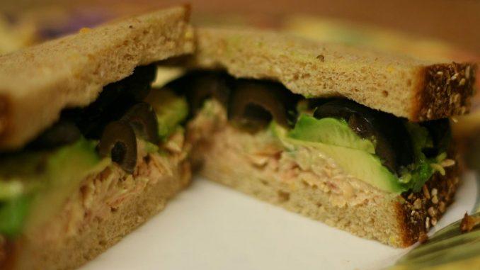 Can a dog eat tuna fish sandwich