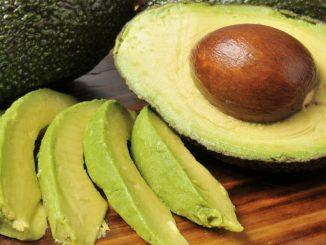 my dog ate avocado