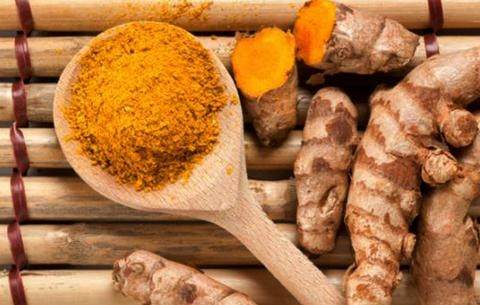 Can I give my dog turmeric? – Can I Give My Dog