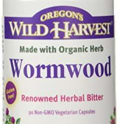 Prevention and Treatments for Tapeworms in Dogs
