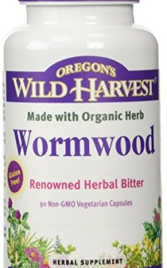 Can I give my dog wormwood? – Can I Give My Dog