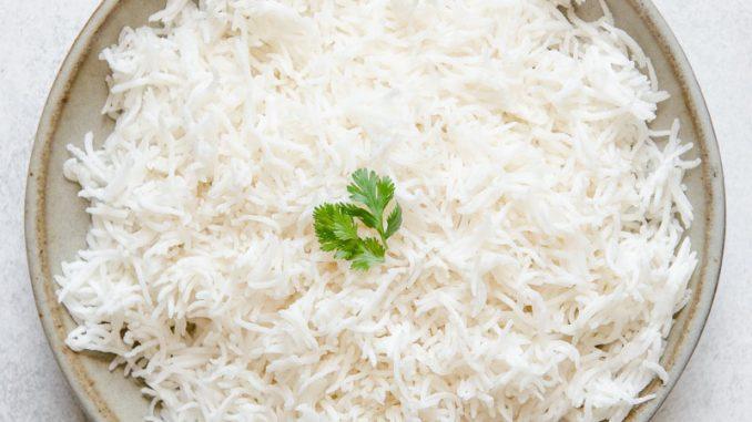 Is Basmati Rice Safe For All Dog Breeds