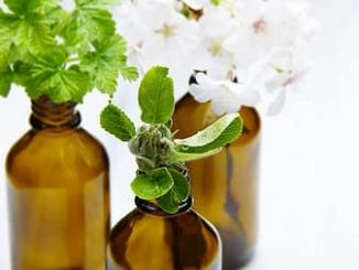 Is Peppermint Oil Safe For Dogs