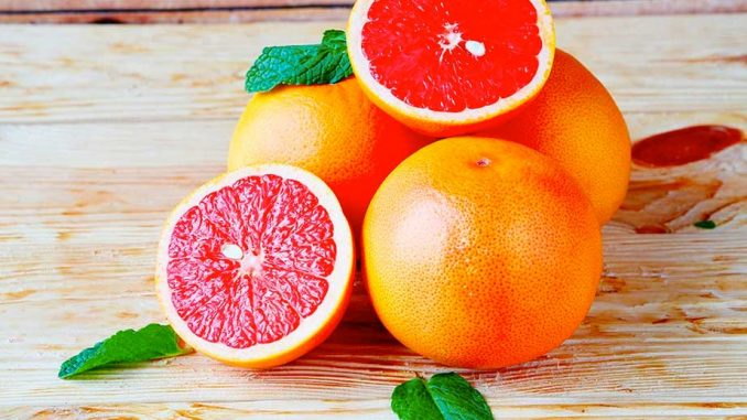 Is grapefruit poisonous for dogs