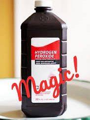 hydrogen peroxide on dogs