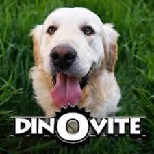 is dinovite safe for dogs