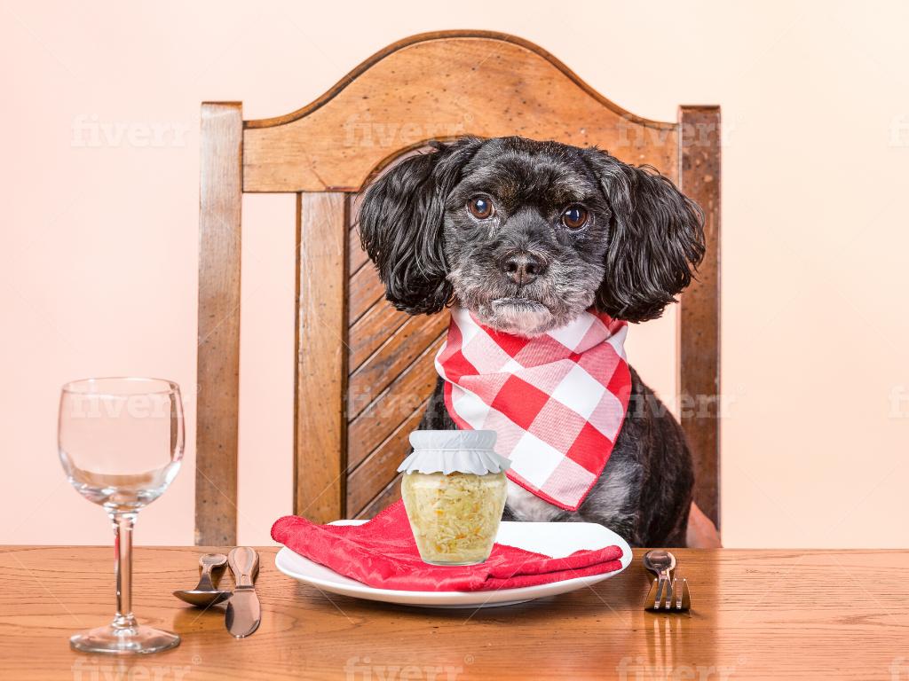 sauerkraut for dogs with blockage