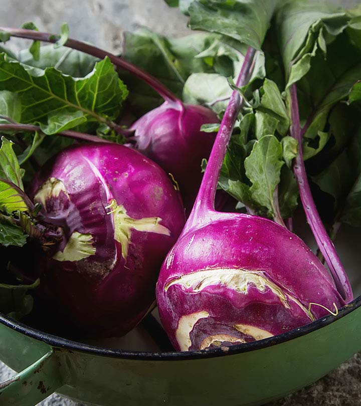Red kohlrabi for puppies