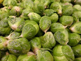can dogs eat brussel sprout stalks
