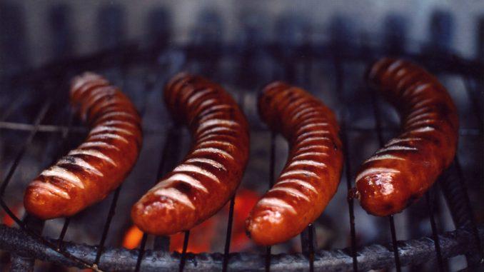 dog sick after eating sausage