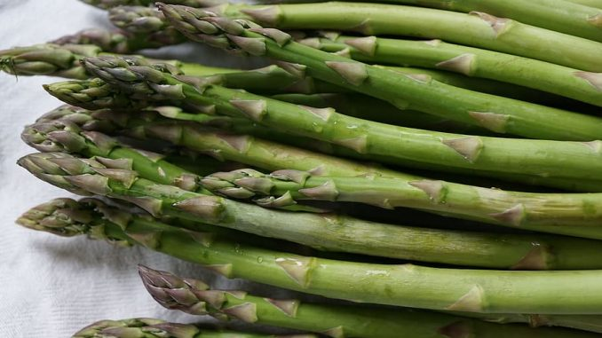 Is Asparagus Safe for Dogs