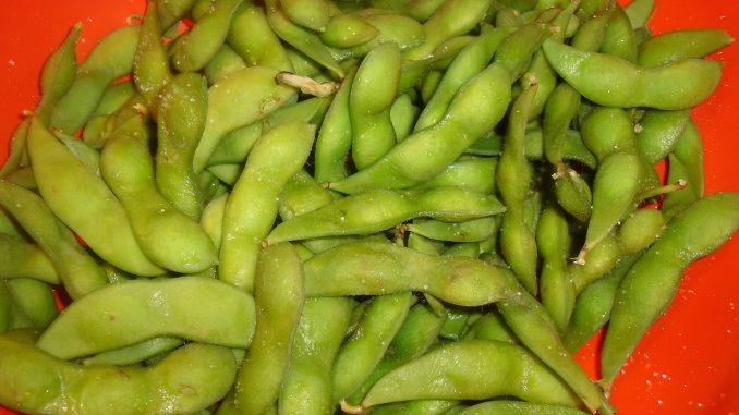 can dogs eat edamame skins