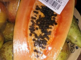 Can I feed my dog papaya