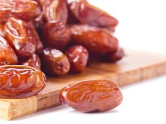 How many dates can a dog eat