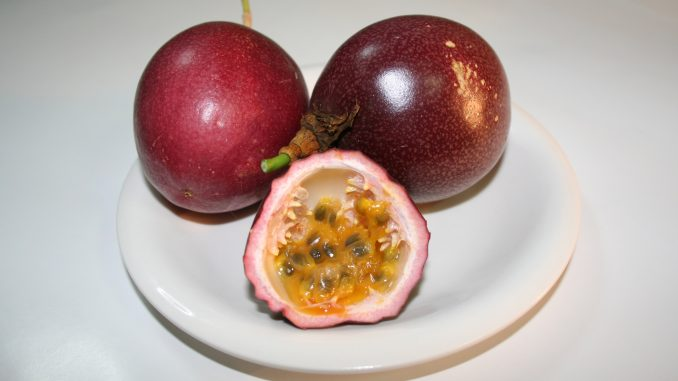 Passion fruit is safe for dogs