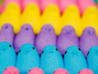 Can dogs eat marshmallow - peeps, smores, fluff, root and other treat