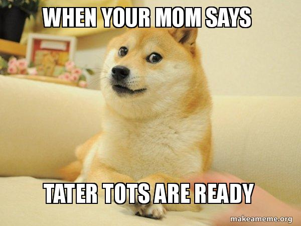 baked tater tots for dogs