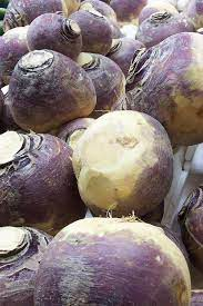 Can a dog eat turnip - Rutabagas