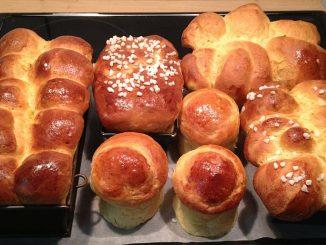 Brioches breads for dogs