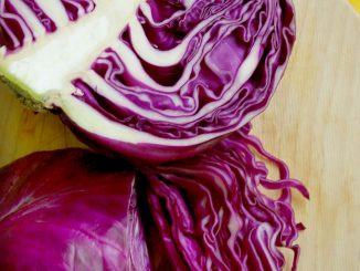 Will cooked cabbage hurt my dog